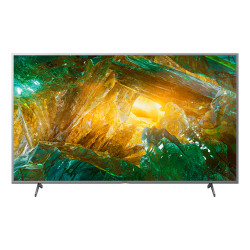 "Sony 49"" 4K HDR TV KD-49XH8077SAEP"